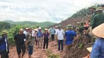 Sở Nông nghiệp báo cáo UBND tỉnh việc xử lý vụ lấn chiếm đất rừng ở huyện Quỳ Hợp