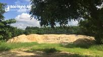 Những cồn đất 'lạ' bên hồ Công viên Trung tâm ở thành phố Vinh