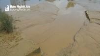 Tổng cục Môi trường vào cuộc vụ xả bùn thải vào hồ điều hòa Cửa Nam