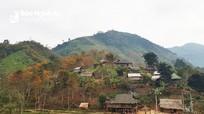 Diễn biến mới sự việc Công ty CP Phát triển điện lực Việt Nam 'thất hứa' với người nghèo Nghệ An