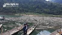 Từ mùi hôi hạ du, Thủy điện Bản Vẽ phát hiện bãi rác nổi khổng lồ ở thượng nguồn Nậm Nơn