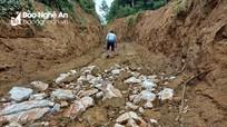 'Đường khai thác keo' hay đường khai thác trái phép quặng đá thạch anh?