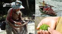 Theo chị em vùng cao bươn chải trên sông tìm rêu, bắt cá