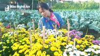 Hoa nở mà người trồng không vui
