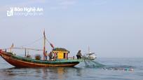 Nghệ An xử phạt 4 tàu cá vi phạm vùng đánh bắt hải sản