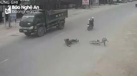 """""""Vô tư"""" khi sang đường, cụ ông ở Nghệ An thoát chết hi hữu"""