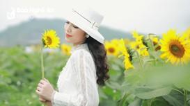 Rực rỡ cánh đồng hoa hướng dương Nghệ An - điểm du lịch hấp dẫn