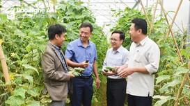 Đẩy mạnh tuyên truyền hình ảnh thị xã Hoàng Mai trên báo Nghệ An