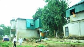 Chờ được tái định cư, người dân tự dựng nhà bên sông Lam sống tạm