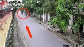 TP Vinh: Làm rõ 20 vụ trộm, cướp nhờ camera an ninh cộng đồng