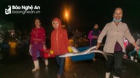 Trải nghiệm nhịp sống chợ hải sản lớn nhất phố biển Cửa Lò