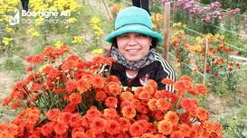 Những hình ảnh đẹp trong lao động của người phụ nữ nông thôn Nghệ An