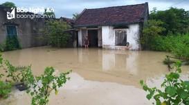 Mưa lớn gây thiệt hại nặng tại Quỳnh Lưu
