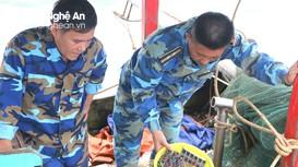 Xử phạt 3 tàu cá dùng kích điện đánh bắt tại vùng biển Hoàng Mai