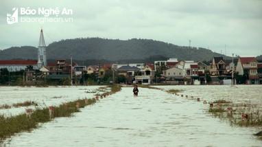 Xuyên trưa tiếp tế cho người dân vùng ngập lũ Quỳnh Lưu