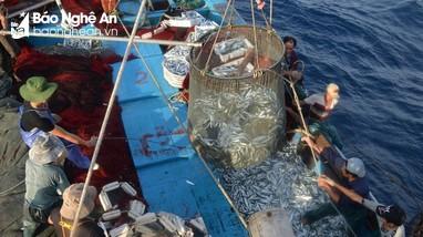 Cơ hội  mới cho ngành khai thác hải  sản