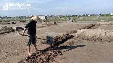 Giá quá thấp, diêm dân Nghệ An không mặn mà với vụ muối mới