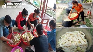 Người dân vùng cao Nghệ An lên rừng hái măng, gửi về xuôi chống dịch
