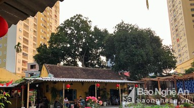 TP Vinh tìm người đến hàng loạt quán cafe, quán bún liên quan bệnh nhân Covid-19