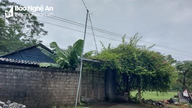 Cần xử lý dứt điểm vụ lấn chiếm đất công ở xã Thịnh Sơn (Đô Lương)