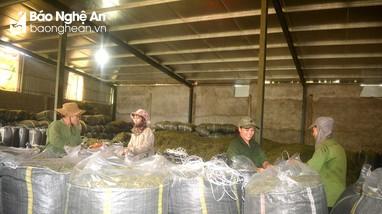 Nghệ An tham gia bàn giải pháp tiêu thụ nông sản trong điều kiện dịch Covid -19