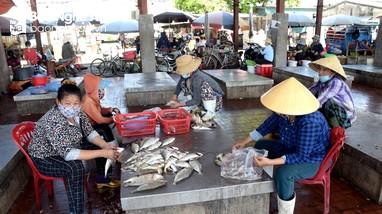 Hải sản Nghệ An giảm giá ngay tại cảng cá do dịch Covid-19