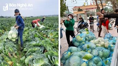 Liên đoàn lao động huyện Diễn Châu kêu gọi giải cứu nông sản cho nông dân