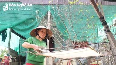 Cận cảnh làng nghề làm giấy dó vào vụ Tết
