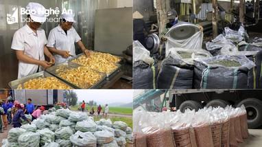 Chỉ thị mới của Chính phủ về thúc đẩy sản xuất, lưu thông, xuất khẩu nông sản