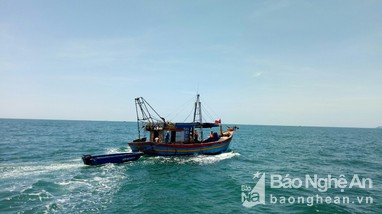Nghệ An xử phạt 7 phương tiện tàu cá vi phạm