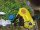 Nghệ An có hơn 950 điểm tồn lưu hóa chất bảo vệ thực vật