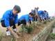 """Hàng nghìn đoàn viên ở Nghệ An ra quân xây dựng """"con đường xanh"""""""