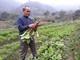 Người dân vùng cao chủ động nguồn rau, thịt sạch phục vụ tết