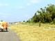 Nhiều tuyến giao thông được 'vô tư' làm sân phơi rơm lúa