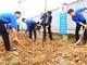 Các địa phương, đơn vị phát động Tết trồng cây Xuân Kỷ Hợi