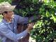 Trồng chanh không hạt trái vụ trên đất xấu, nông dân Nghệ An thu lãi 50 triệu/ha