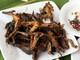 Lạ và ngon miệng với măng, nhái nướng, cơm lam tại Lễ hội đền Vạn miền Tây Nghệ An