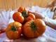 Con Cuông trồng cà chua đặc sản trong nhà lưới