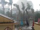 Sau ròng rã đại hạn, nhiều huyện ở Nghệ An đón 'mưa vàng'