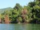 Nhịp sống bình dị giữa lòng hồ Hủa Na