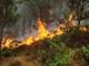 Cháy đồi thông, nghi do người dân đi viếng mộ thắp hương