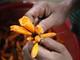Món canh Đoọc Pít giải nhiệt nấu từ hoa của người dân vùng cao xứ Nghệ