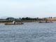 """Người dân phản ánh tái diễn nạn """"cát tặc"""" trên sông Lam"""