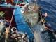 Nghệ An chỉ có 8 tàu cá lắp đặt thiết bị giám sát hành trình
