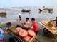 """Mùa này, cứ """"vác cào"""" ra biển, ngư dân Nghệ An bội thu ruốc biển"""