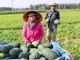 Xây dựng tổ chức Hội và giai cấp nông dân vững mạnh