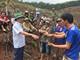 Huyện Quỳ Hợp xử phạt hành vi chiếm đất rừng sản xuất ở xóm Long Thành