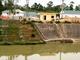 Nhà máy Xi măng Đô Lương bơm gần 80.000 m3 nước giúp dân cứu hạn cho lúa
