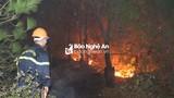 Nghệ An sẽ khám nghiệm hiện trường, làm rõ nguyên nhân gây cháy rừng