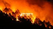 Lửa rừng đang bùng phát dữ dội ở xã Diễn An (Diễn Châu)